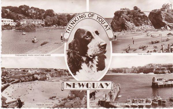 postcard Cornwall NEWQUAY, Thinking of you at posted 1960 real photograph