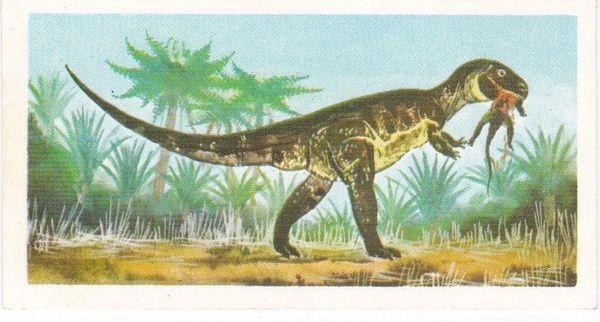 No. 16 Megalosaurus