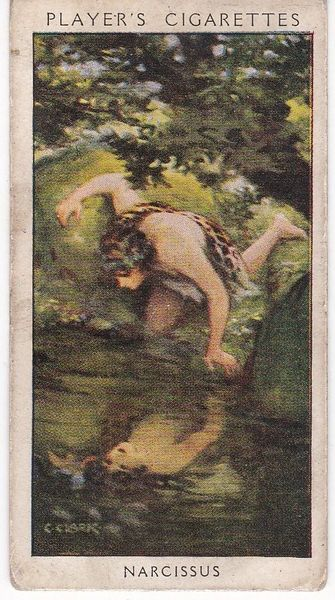 No. 01 Narcissus : A Mythical Dandy