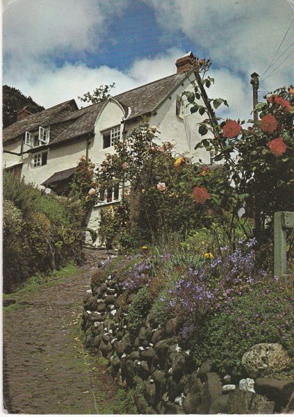 Post Card Devon CLOVELLY North Hill Judges 2659X