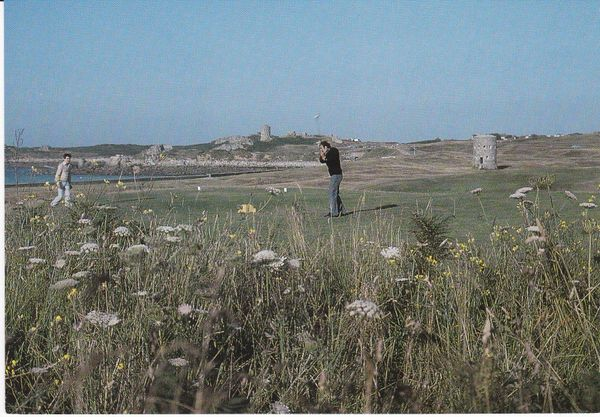 Post Card Channel Islands GUERNSEY L'Ancresse Golf Course with Martello Towers rough in foreground James Davis