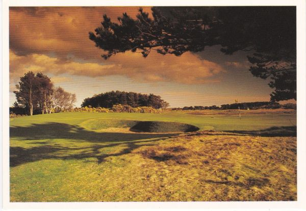 Post Card Scotland Angus CARNOUSTIE13th Hole Golf The Scottish Gallery DJ 80