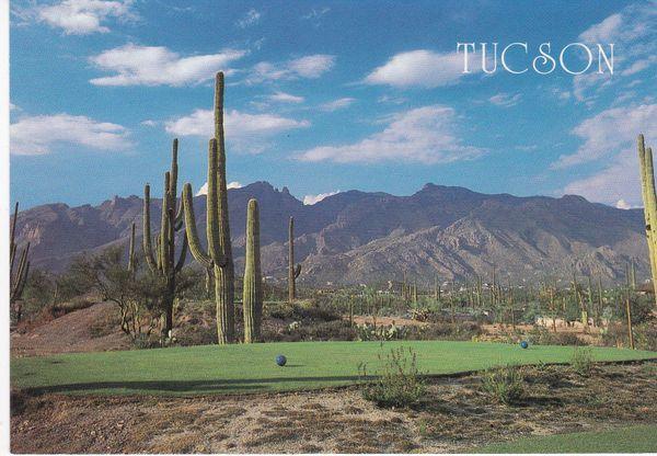Post Card United States Arizona TUCSON Smith-Southwestern Inc., / Terrell 1086044
