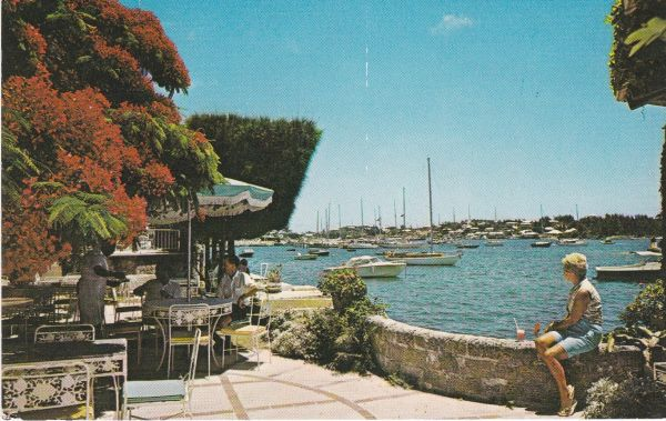 Post Card BERMUDA HAMILTON Waterloo House View from the barbecue terrace Island Press