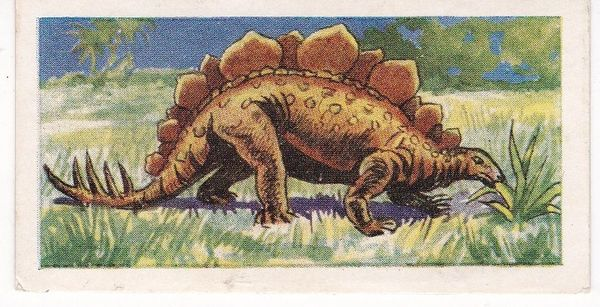 No. 19 Scolosaurus
