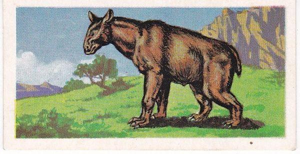 No. 34 Moropus