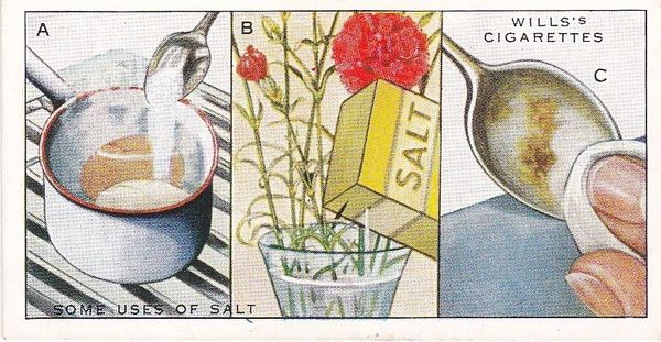 Household Hints (1936) No. 40 Some Uses of Salt