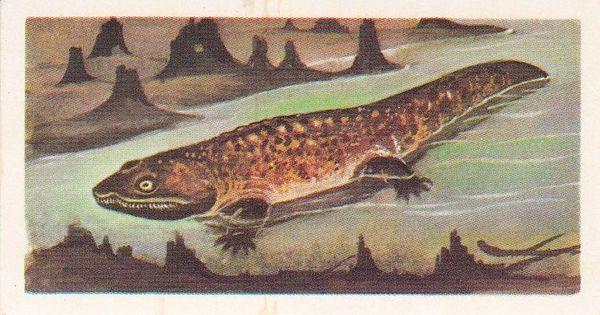 No. 02 Ichthyostega