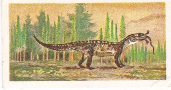 No. 09 Mandasuchus