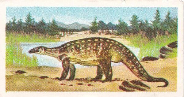 No.10 Plateosaurus