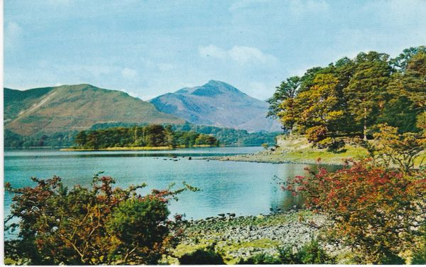 Post Card Cumbria Lake District Derwentwater from Broomhill Point Webster LK.4A