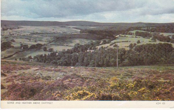 Post Card Devon Dartmoor DARTMEET Gorse and Heather above Dartmeet Jarrold Cotman-Color KDM 103
