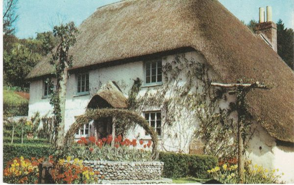 Post Card Devon COCKINGTON Torquay Rose Cottage Jarrold Cotman-Color KT 180