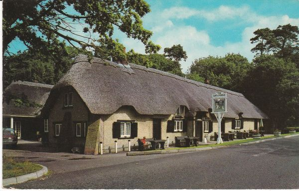 Post Card Hampshire New Forest CAT AND FIDDLE INN PT2717