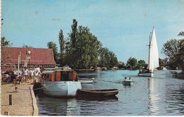 Postcard Norfolk Brundale The River Yare