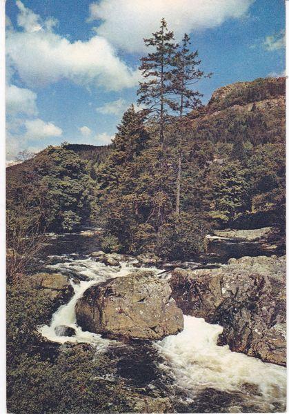 Post Card Wales Caernarvonshire Betws-y-Coed Fir Island