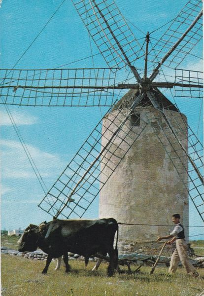 Post Card Spain Balears Formentera Mola Mill