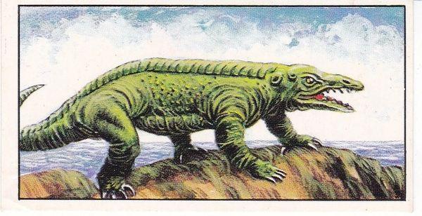 No. 23 Protosuchus