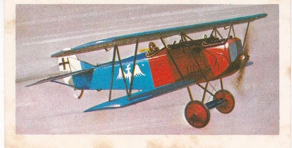 black back reprint No 10 Fokker D.VII