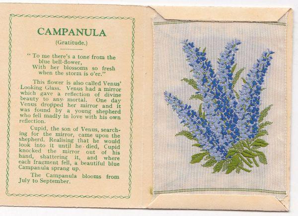 No. 05 Campanula