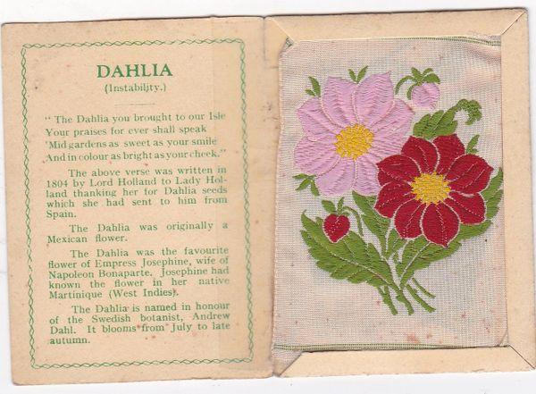 No. 12 Dahlia