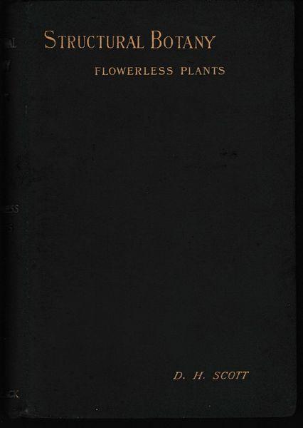 Structural Botany Part II Flowerless Plants D H Scott 1897 hb