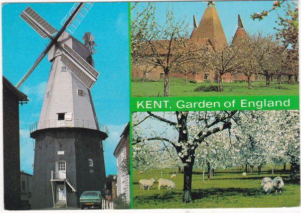 Postcard Kent Garden of England 3 views