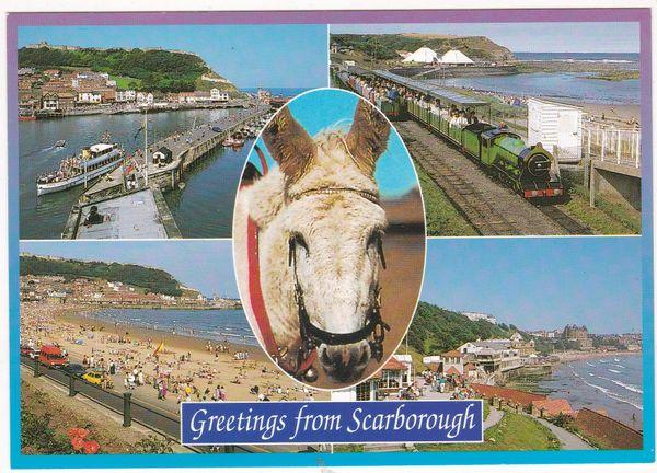 Postcard Yorkshire 4 views + donkey