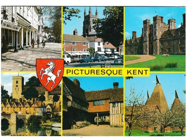 Postcard Kent Picturesque Kent 6 views Salmon