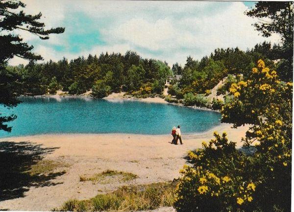 Postcard Dorset Wareham The Blue Pool