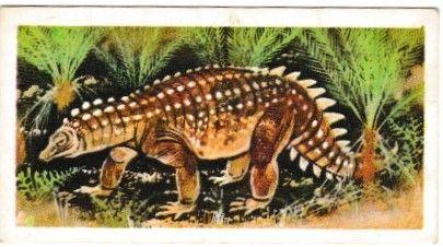 No. 18 Scelidosaurus