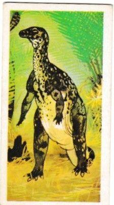 No. 21 Hypsilophodon