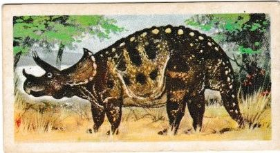 No. 26 Triceratops