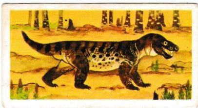 No. 38 Cynegnathus