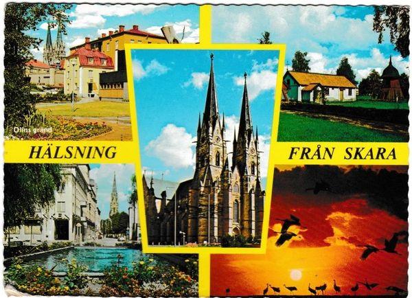 Post Card Sweden Halsning Fran Skara 5 views