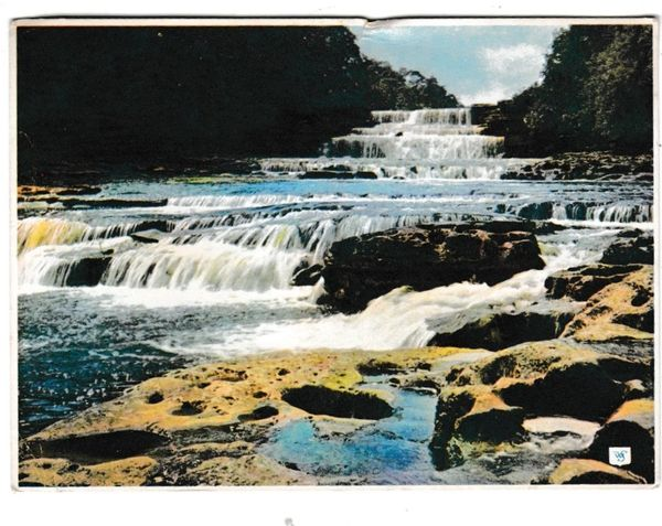 Postcard Yorkshire Aysgarth The West Falls