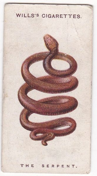 No. 21 : The Serpent