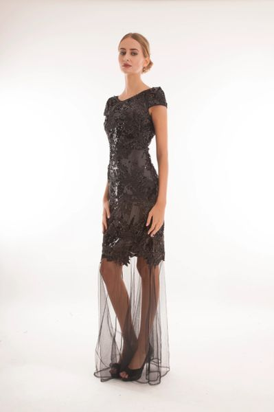 Sequin embellished dress with sleeves and mesh