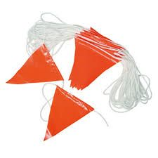 Flag Pennant String, Orange 100'