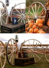 Decor, Wagon Wheel