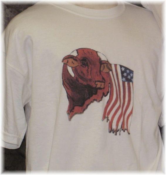 Santa Gertrudis USA Tee Shirt