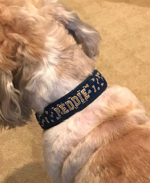 Peddie Dog Collar
