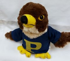 Peddie Falcon