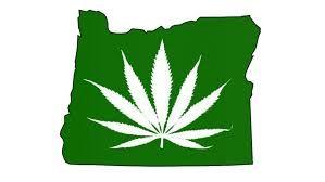 One bottle of CBD Hemp Oil Marijuana THC -.3%