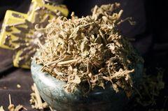 1 oz Klip Dagga Foliage Leonotis nepetifolia