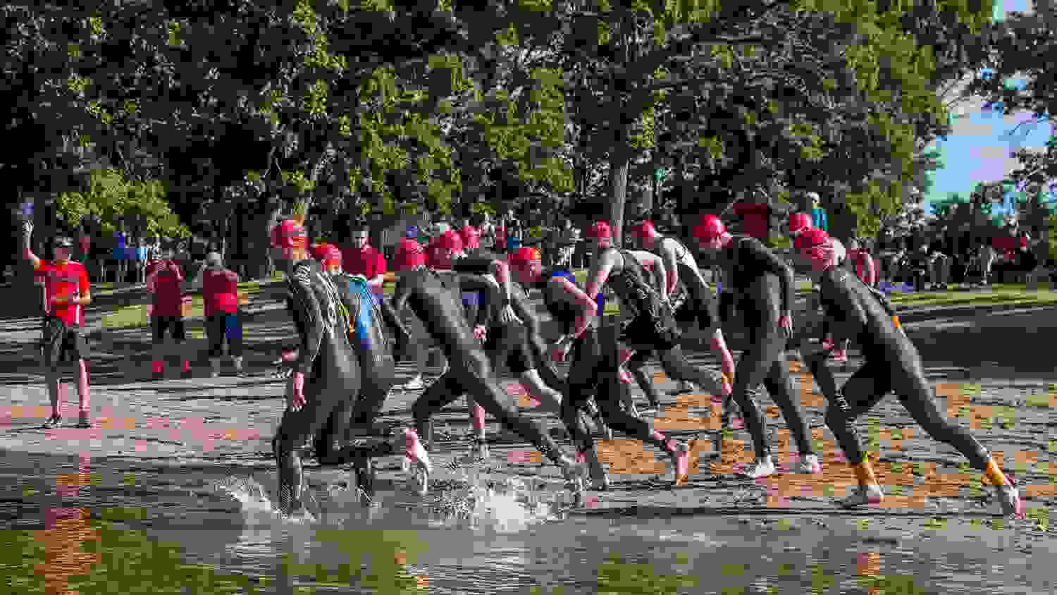 triathlon swimmers entering the water