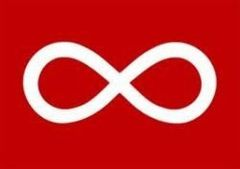 METIS First Nations RED 3' X 5' Feet FLAG BANNER