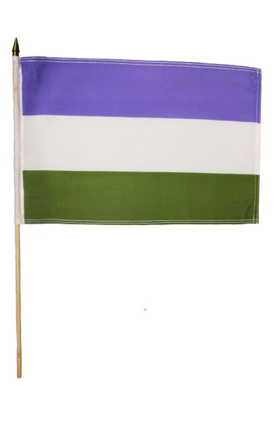 """GENDER QUEER Pride 12"""" x 18"""" Inch Flag With 2 Feet Wooden Stick Great Quality New …"""