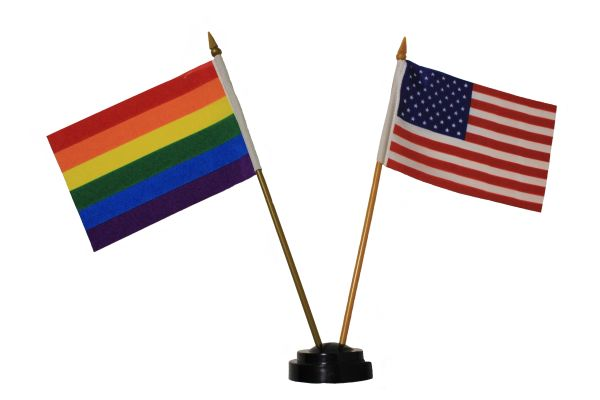 """USA & GAY And LESBIAN PRIDE Rainbow 4"""" X 6"""" Inch Mini DOUBLE STICK FLAG BANNER On A 10 Inch PLASTIC POLE"""