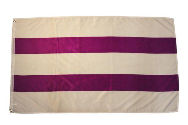 Two Row WAMPUM 3' X 5' Feet FLAG BANNER